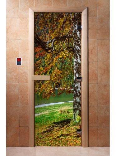 Дверь с фотопечатью A089